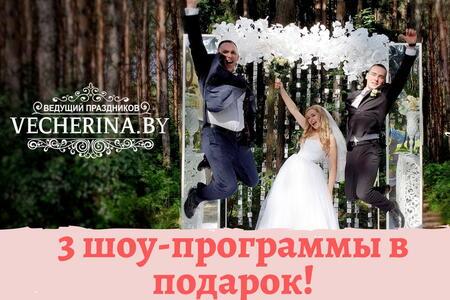 Ведущий Василий Ефимов