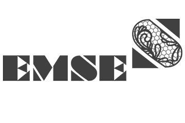 EMSE - ������������� �����  ������� � �����������
